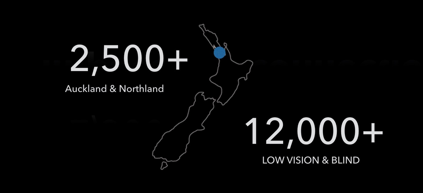 Data attribution: New Zealand Blind Foundation, 2015 Annual Report.