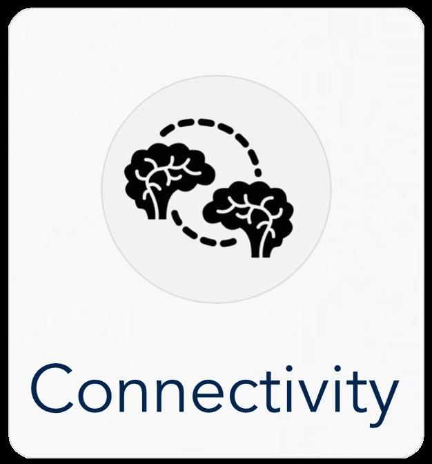 6ideas_nz_connectivity