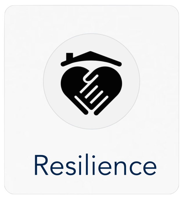6ideas_nz_resilience